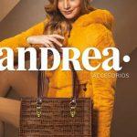 Accesorios y bolsas Andrea 2020 Otoño Invierno