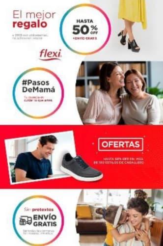 catalogo flexi 2021